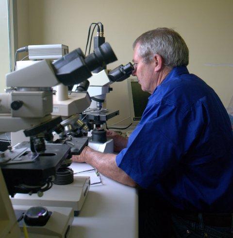 Analysis of Frozen Thawed Semen - Microscope Analysis.jpg